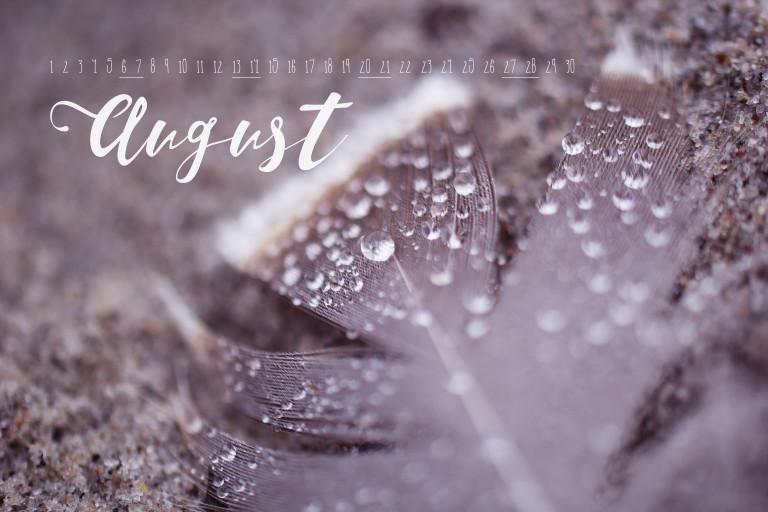 wallpaper_august
